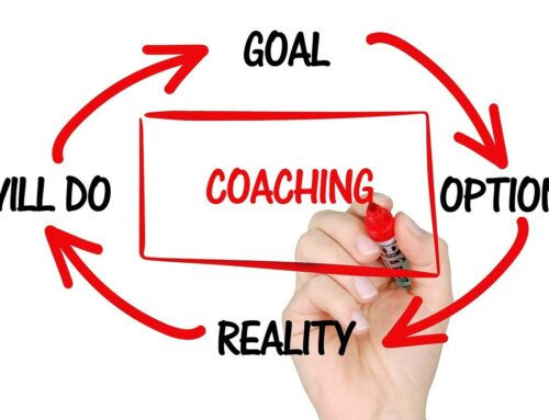 Conseil, Coaching & Accompagnement